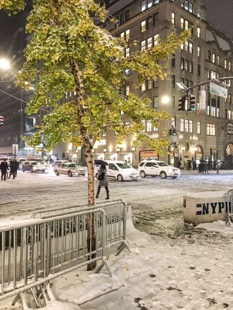 newyork-2018-snow.jpg